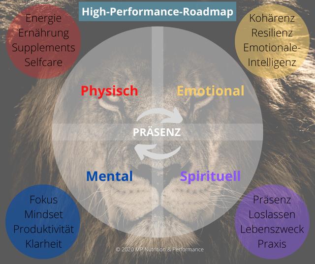 performance-health-coaching
